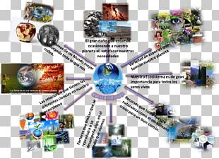 Sustainable Development Ecology Natural Environment Sustainability Map PNG