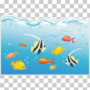 Coral Reef Fish Deep Sea Marine Biology Underwater PNG