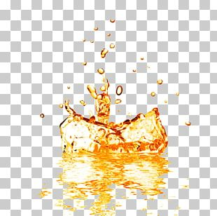 Orange Juice Fruit Splash PNG