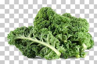 Curly Kale Leaf Vegetable Fruit Cruciferous Vegetables PNG