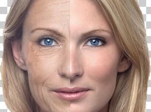 Ageing Skin Old Age Anti-aging Cream Wrinkle PNG