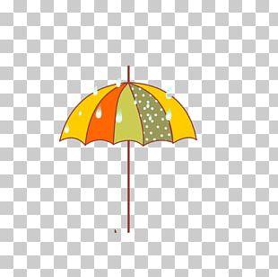Cartoon Umbrella Photography PNG