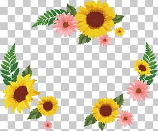 Common Sunflower Euclidean Icon PNG