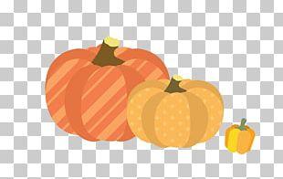 Pumpkin Calabaza Cucurbita Maxima Winter Squash PNG