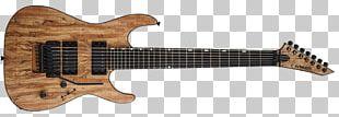 Bass Guitar Dean Guitars Jackson Guitars Electric Guitar PNG