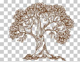 Drawing Tree PNG
