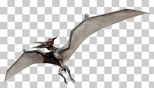 Jurassic Park Pteranodon Microceratus Mosasaurus Dimorphodon PNG