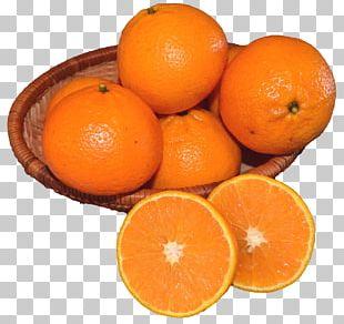 Mandarin Orange Tangerine Vegetarian Cuisine Tangelo PNG