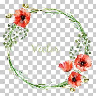 Flower Circle PNG