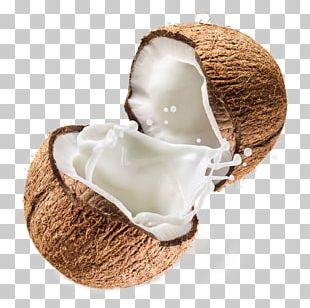Coconut Milk Powder Coconut Water PNG