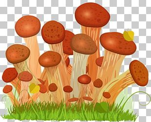 Honey Fungus Edible Mushroom Euclidean Drawing PNG