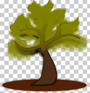 Free Content Tree PNG