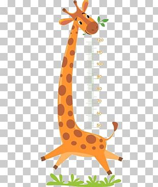 Giraffe Illustration PNG