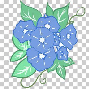 Floral Design Illustration Japanese Morning Glory PNG