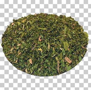 Nilgiri Tea Tieguanyin Leaf Vegetable Tea Plant PNG