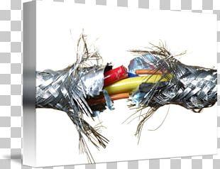 Electrical Cable Electrical Wires & Cable Electricity Kind PNG