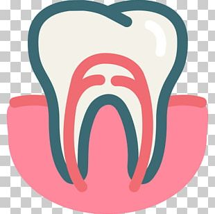 Gums Dentistry Dental Surgery Root Canal PNG