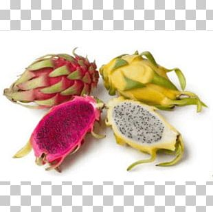 Pitaya Fruit Nutrition Health Dietary Fiber PNG