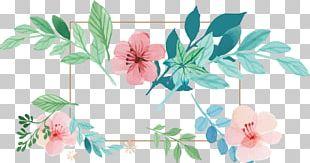 Floral Design Flower Petal Rose Family Shrub PNG