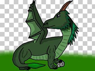 Carnivores Illustration Reptile Cartoon Fauna PNG