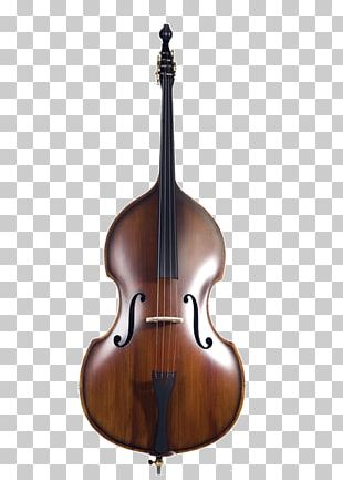 Double Bass Violin String Instruments Cello Bass Guitar PNG