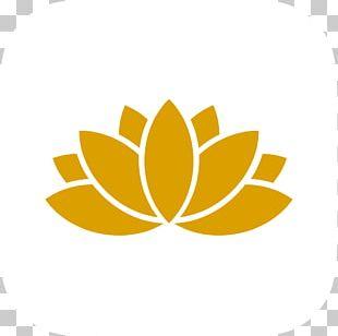 Lotus Flower Png Images Lotus Flower Clipart Free Download