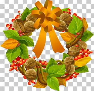 Hand-painted Nuts Circle PNG