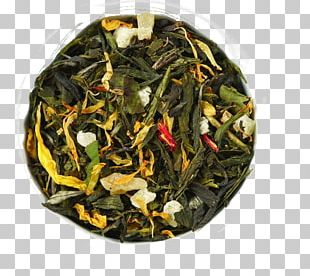 Green Tea Sencha White Tea Bai Mudan PNG