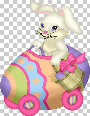 White Rabbit European Rabbit PNG