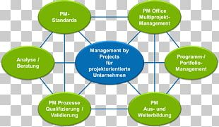 Project Management Organization Consultant Project Manager PNG