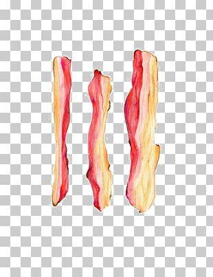 Bacon Cartoon Drawing Illustration PNG