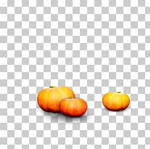 Calabaza Gourd Pumpkin Winter Squash PNG