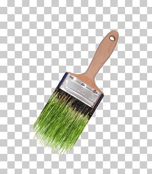 Paintbrush CEDE Aruba Paintbrush Drawing PNG