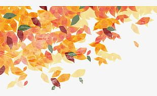 Cartoon Hand Painted Autumn Leaves Material PNG