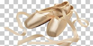 Ballet Shoes Salmon PNG