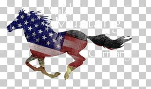 Mustang Tennessee Walking Horse Decal Equestrian Drawing PNG