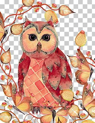 Owl Watercolor Painting Drawing Sketch PNG