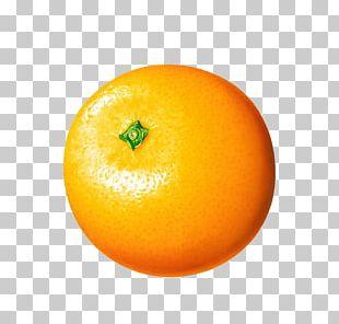 Orange Juice Clementine PNG