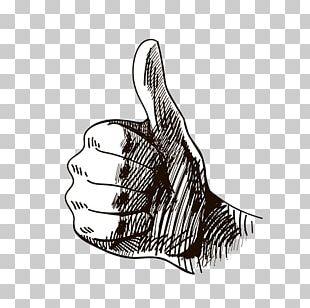 Thumb Signal Rule Of Thumb Hand PNG