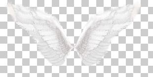Wing Butterfly Shoe H&M Angle PNG