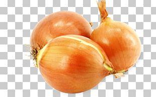 Organic Food Onion Vegetable Fruits Et Légumes PNG