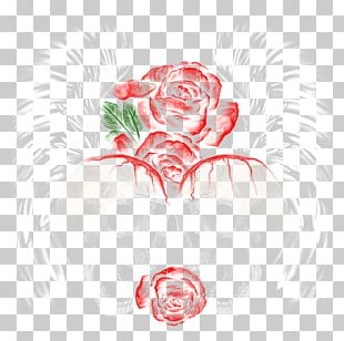 Garden Roses Cabbage Rose Floral Design Drawing Illustration PNG