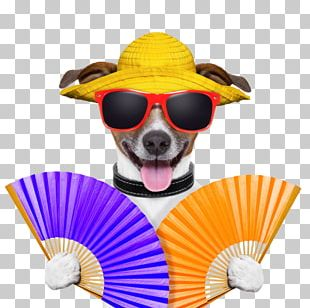 Stock Photography Dog PNG