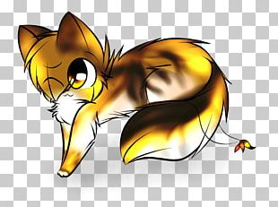 Whiskers Cat Butterfly Insect Snout PNG