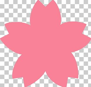 Cherry Blossom Flower Drawing PNG