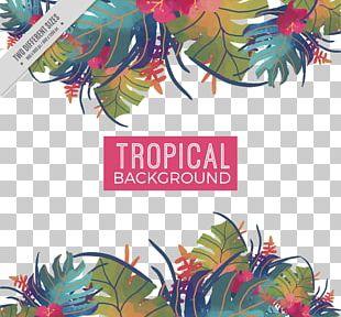 Watercolor Painting Tropics Leaf PNG