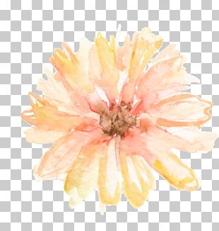 Flower Watercolor Painting Headband Floral Design PNG