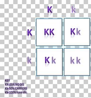 Punnett Square Krabbe Disease Leukodystrophy Genetic Disorder PNG