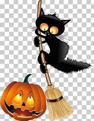 Halloween Black Cat Jack-o'-lantern PNG