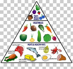Paleolithic Diet Food Pyramid Eating PNG